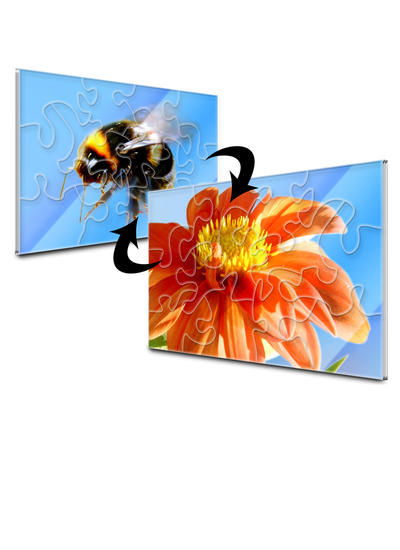 4x6 Stone-Cut with 12 Pieces Custom 2-Sided Acrylic Puzzle